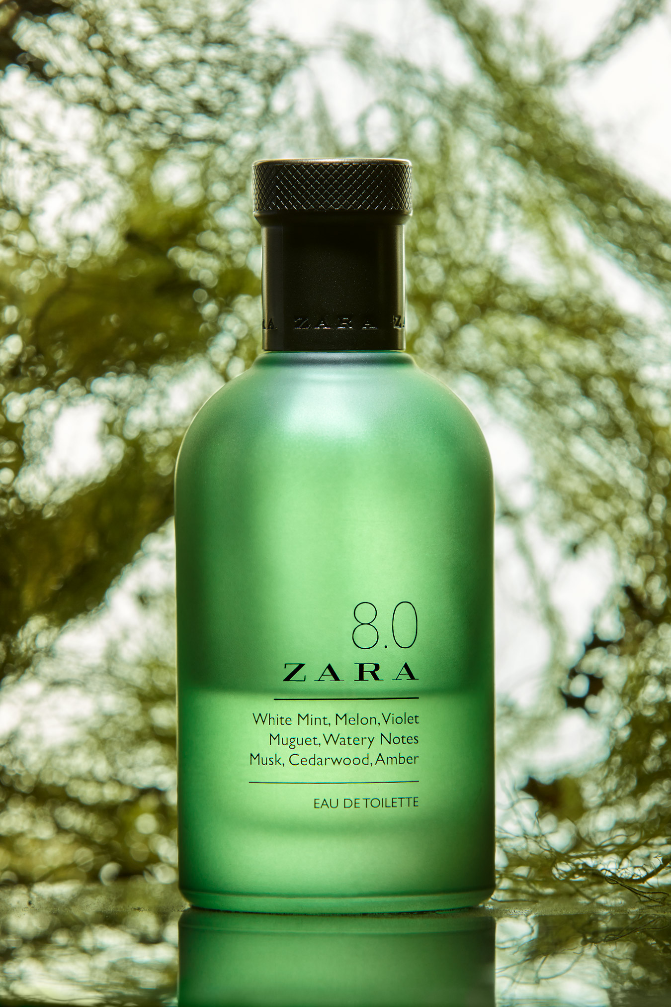 Zara-8.0 | Publicidad